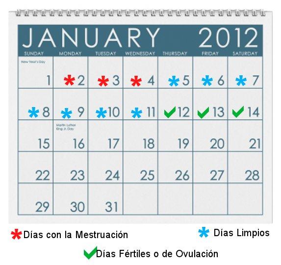 Calendario De Mis Dias Fertiles.Como Saco La Cuenta De Mis Dias Fertiles