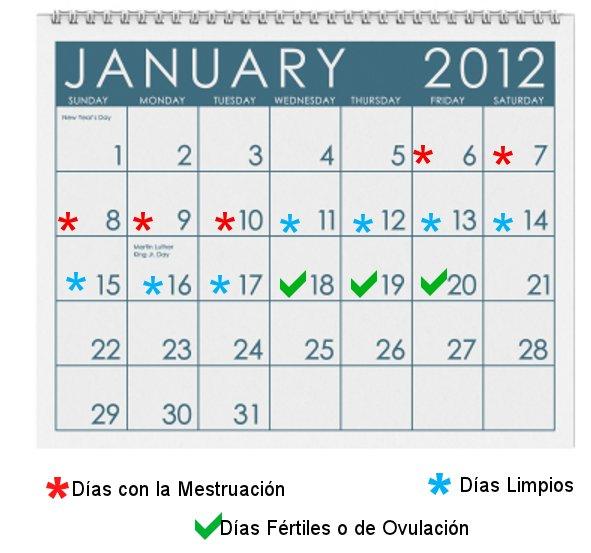 Dias Fertiles Mujer Calendario.Como Saco La Cuenta De Mis Dias Fertiles